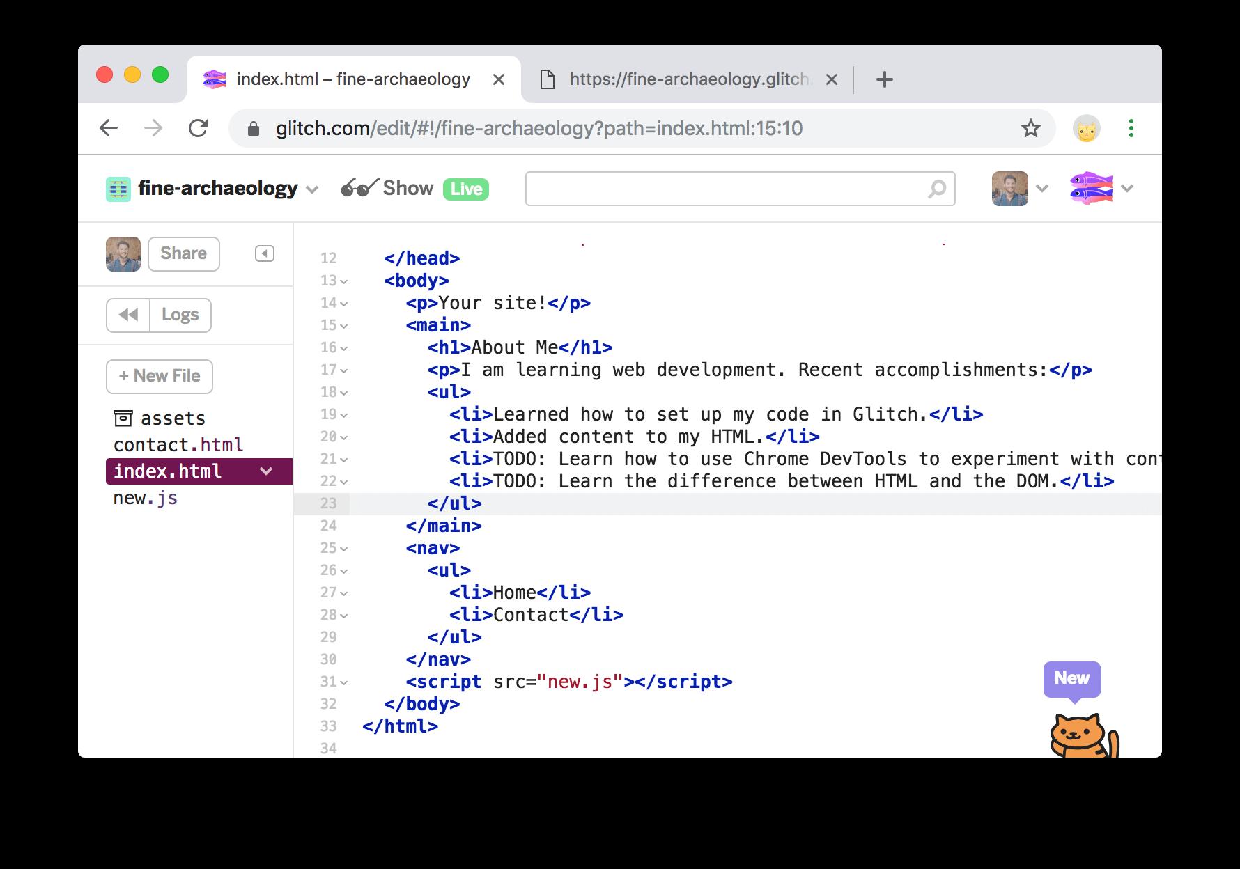 在index.html中找不到神秘文本。