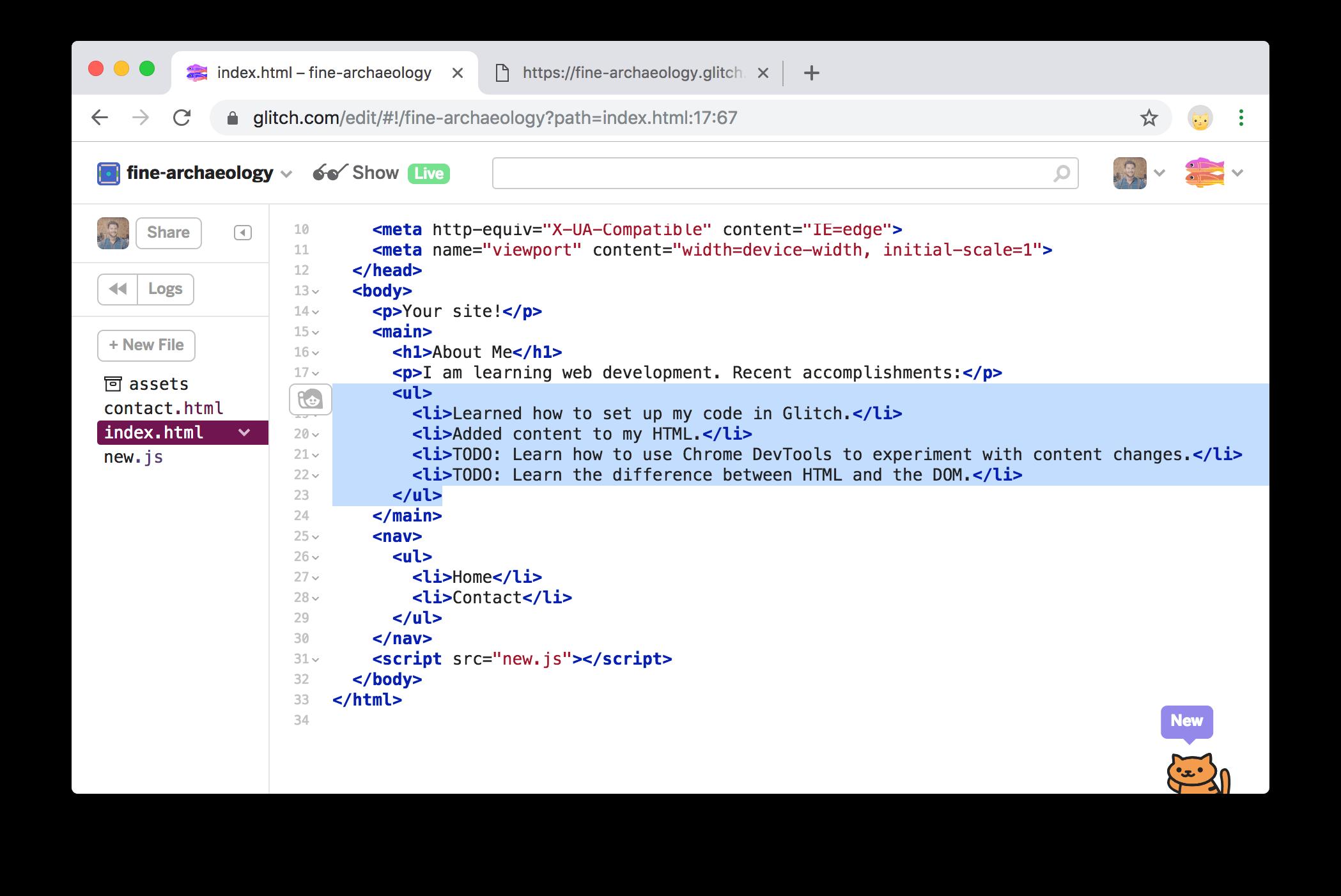新代码在编辑器选项卡中突出显示。